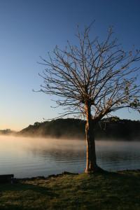 nowa zelandia 2015 029