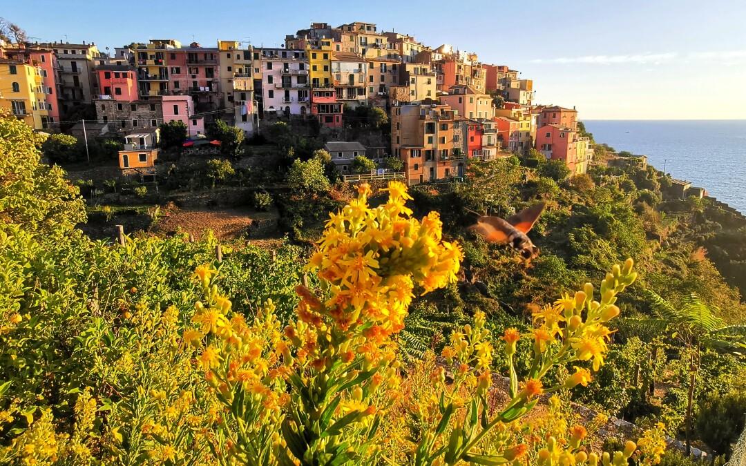 Relacja z Pięcioziemia czyli Cinque Terre okiem Marty i Szymona
